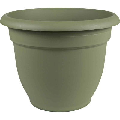 Bloem Ariana 8.8 In. H x 8 In. Dia. Plastic Self Watering Thyme Green Planter